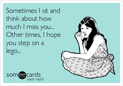 sometimes-i-sit-and-think-about-how-much-i-miss-you-other-times-i-hope-you-step-on-a-lego--22530